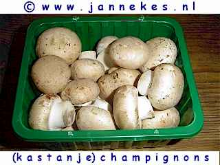 Kastanjechampignons