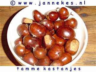 Tamme kastanjes