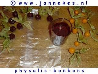 recepten voor physalis bonbons